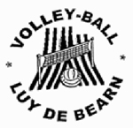 logoVolley